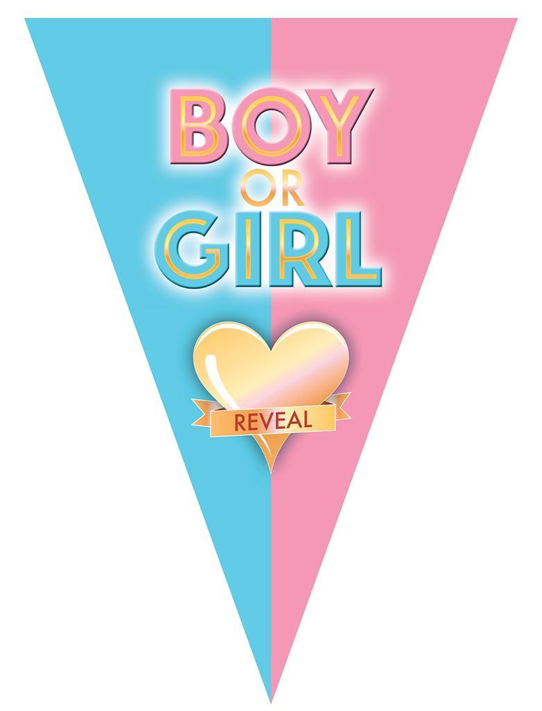 Vlaggenlijn boy or girl gender reveal