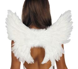 Vleugels Witte Veren - 50x45cm