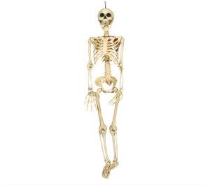 Skelet decoratie 90 Cm
