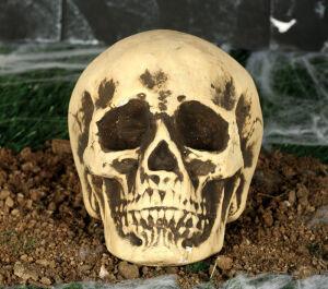 Foam Skull 22 Cms