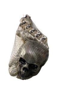 Skelet onderdelen met doodskop dark