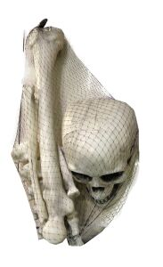 Skelet onderdelen met doodskop halloween