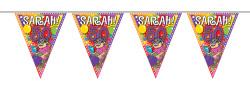 Vlaggenlijn ''Sarah Knalfeest'' - 10m