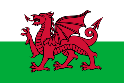 Landenvlag Wales 90 x 150 cm