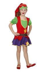 Kabouter Kostuum voor Meisjes