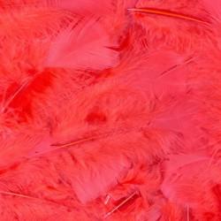 Veren met 100 stuks verpakt - Rood