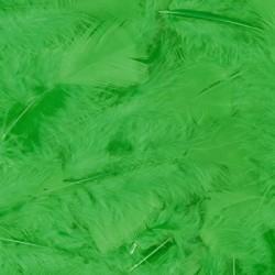 Veren met 100 stuks verpakt - Groen
