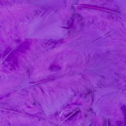 Veren met 100 stuks verpakt - paars